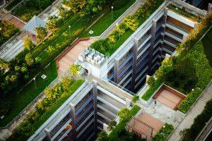 Coberturas ecoeficientes podem ter mantas refletivas e telhado verde