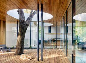 Natureza integrada: 17 projetos com árvores no interior